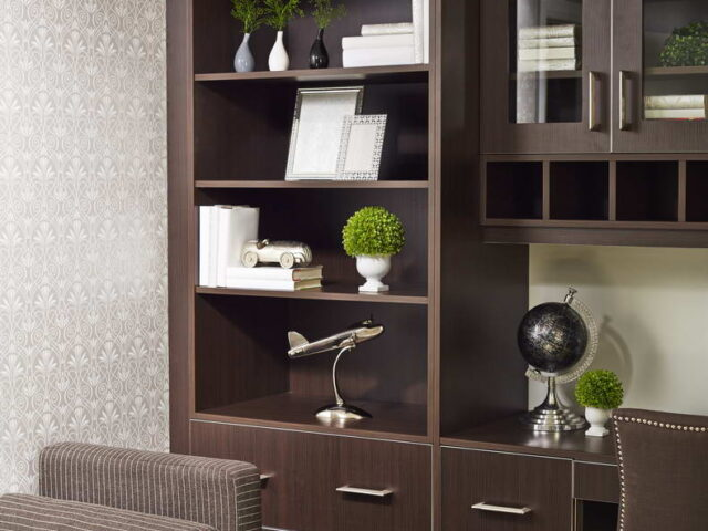 Custom Wall Units Design in Amazing Home Office - Renovations Services